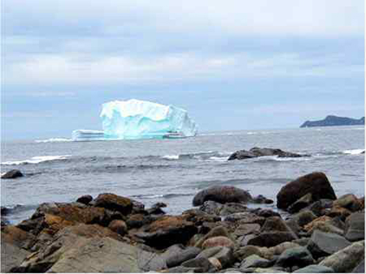 Picture Of Iceberg On Beaches Path On The East Coast Trail