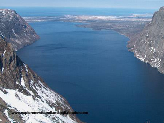 Snowmobiling in Gros Morne, Newfoundland and Labrador-Picture#8.